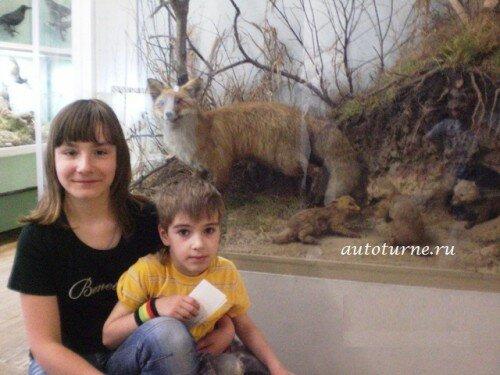 Краеведческий музей Человек и природа в Рязанском Кремле