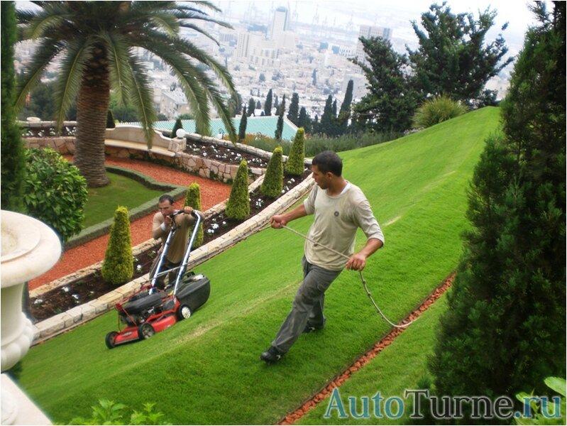 как стригут газоны в Бахайских садах