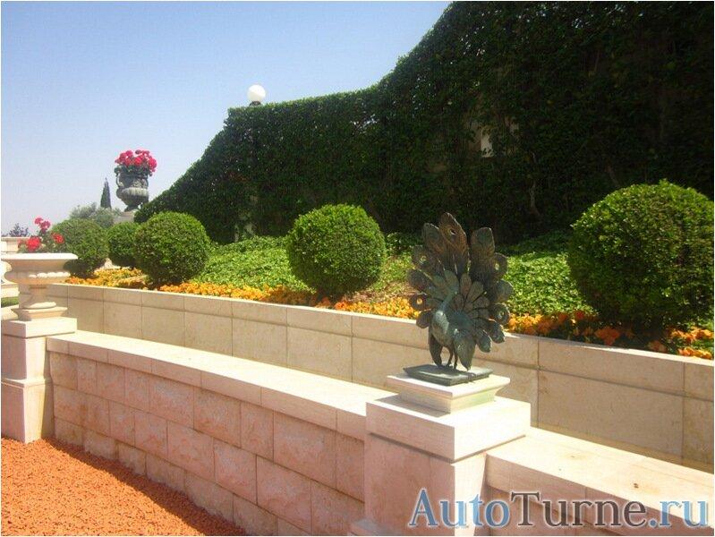 статуя-павлина